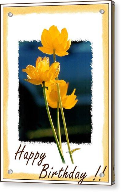 Yellow Flower 1 Acrylic Print