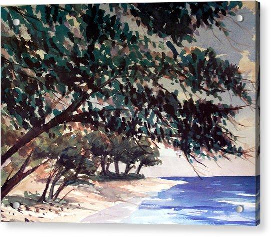 Anini Beach Acrylic Print by Jon Shepodd