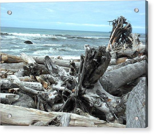 Rialto Beach La Push Acrylic Print