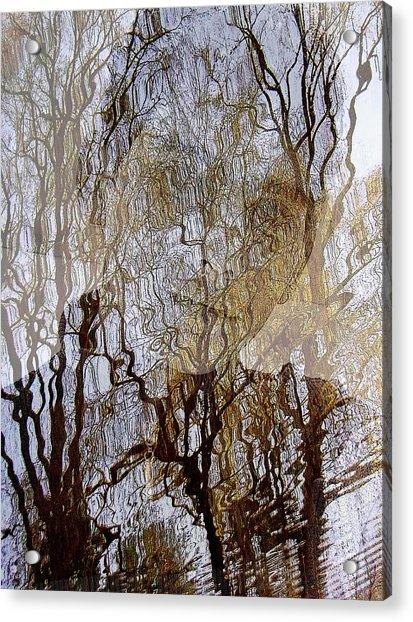 Asphalt - Portrait Of A Boy Acrylic Print
