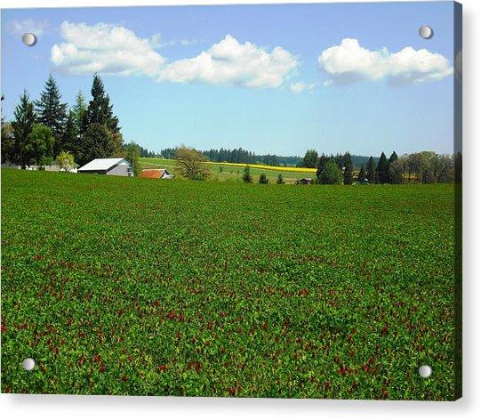 Banks Oregon Acrylic Print