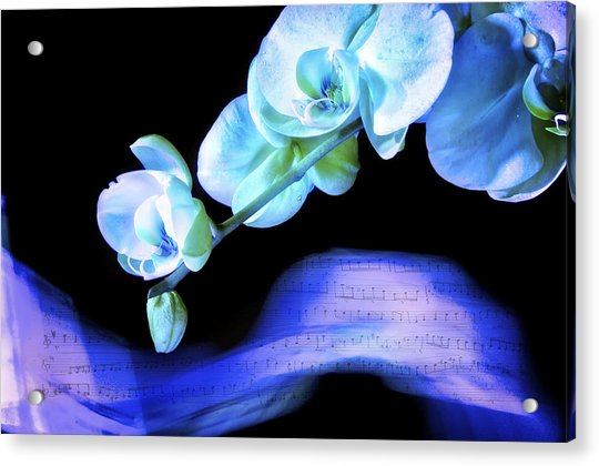 Blue Note Acrylic Print