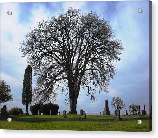 Buena Vista Cemetery Port Gamble Acrylic Print
