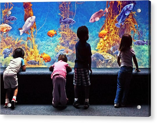 Celebrating Life Under The Sea  Acrylic Print by Donna Pagakis