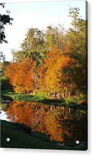 December Morn On Deerfield Creek Acrylic Print