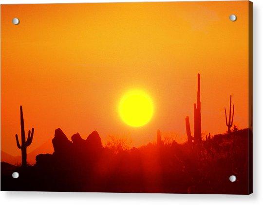Desert Sun Acrylic Print by Robert Wiley