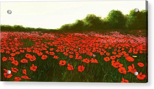 Fine Art Oil Painting Poppies Emerald Isle Acrylic Print