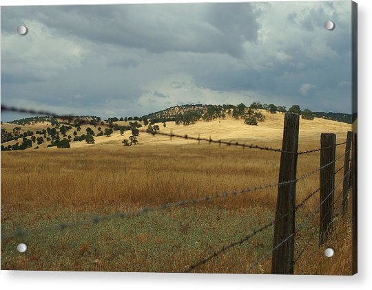 Gold Country Acrylic Print