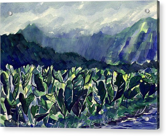 Hanalei Taro Acrylic Print by Jon Shepodd