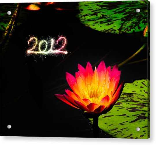 Acrylic Print featuring the photograph Happy New Year 2012 by Michael Taggart