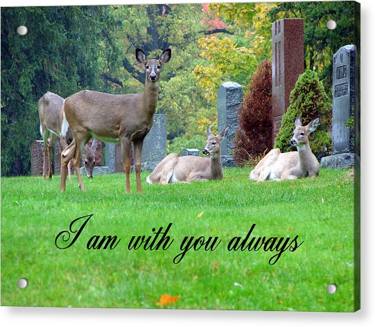 I Am With You Always Acrylic Print