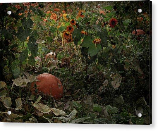 In The Shades Of An Autumn Sky Acrylic Print