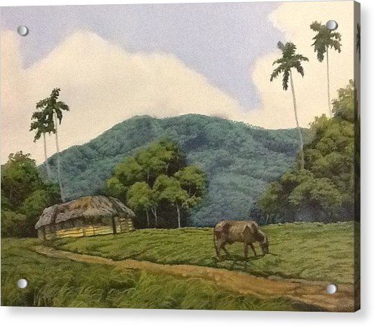 Peaceful Surroundings Acrylic Print