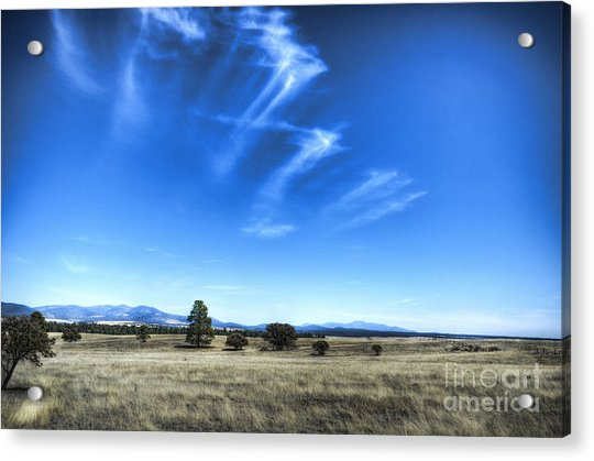 Point Of Pines - San Carlos Indian Reservation Acrylic Print