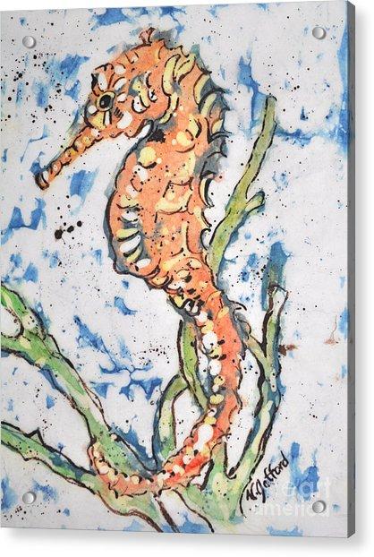 Seahorse Acrylic Print by Norma Gafford
