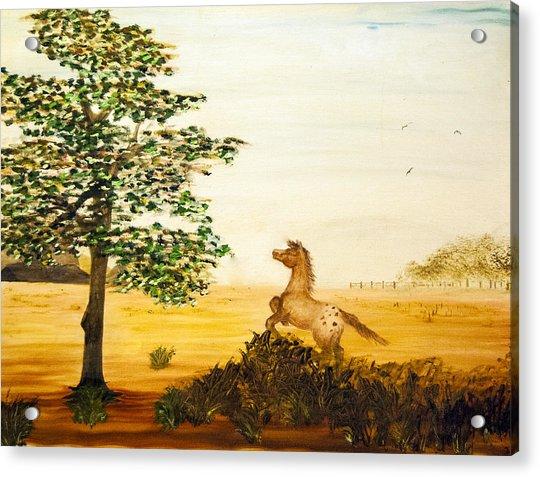 See Spot Run Acrylic Print