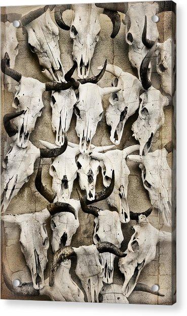 Skull Art Acrylic Print