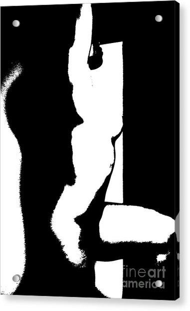 Stretch Acrylic Print