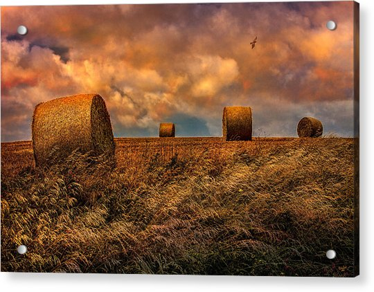 Acrylic Print featuring the photograph The Hayfield by Chris Lord