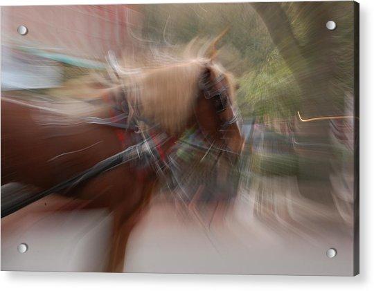 The Horse Acrylic Print