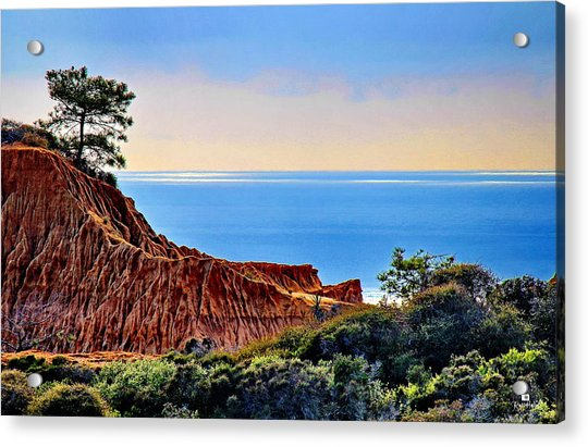 Torrey Pine Look Out Acrylic Print