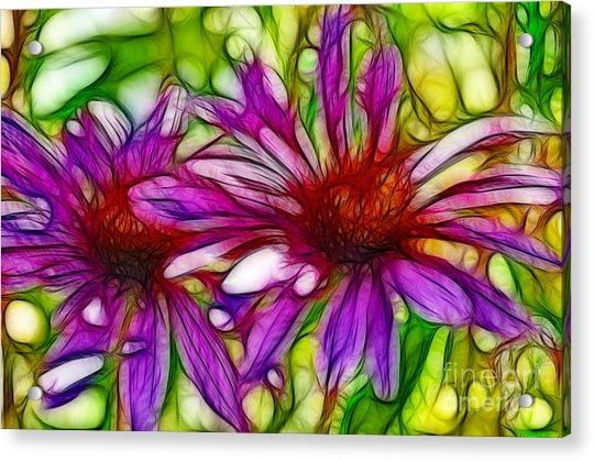 Two Purple Daisy's Fractal Acrylic Print