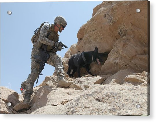 Us Soldier And Blek A Working Dog Clear Acrylic Print by Everett