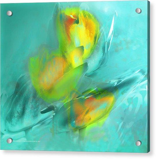 Viento De Colores Acrylic Print