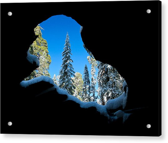 Winter Inside Out Acrylic Print