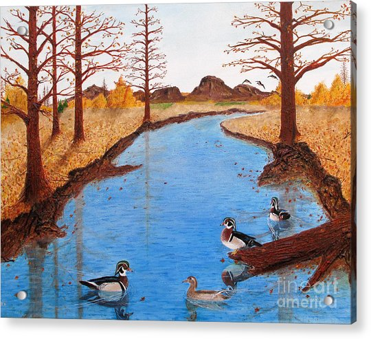 Wood Ducks On Jacobs' Creek Acrylic Print