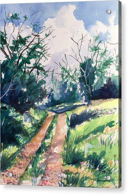 Woodsy Trail Acrylic Print by Jon Shepodd