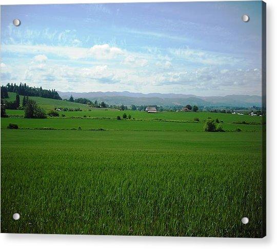 Yamhill Countryside Acrylic Print