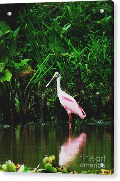 Along A River Road Acrylic Print by Deborah Chase