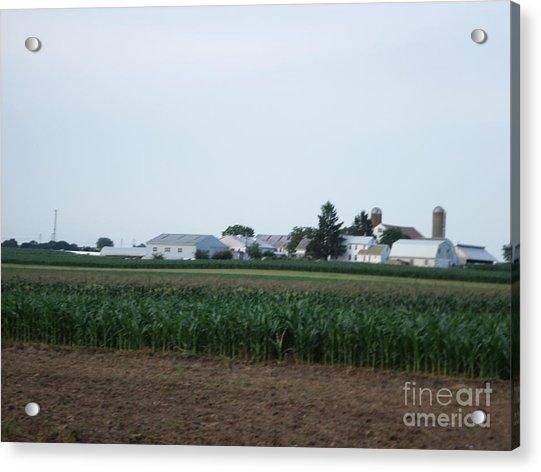 Amish Homestead 9 Acrylic Print