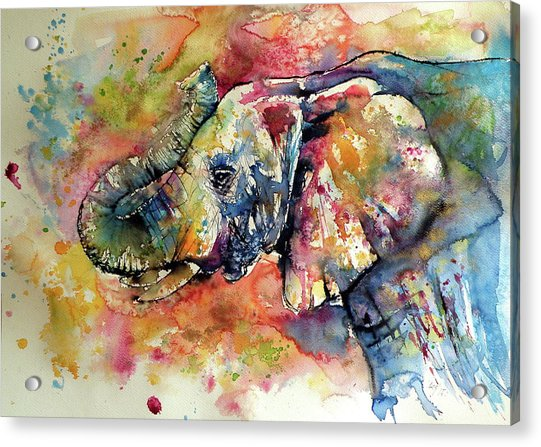 Big Colorful Elephant Acrylic Print