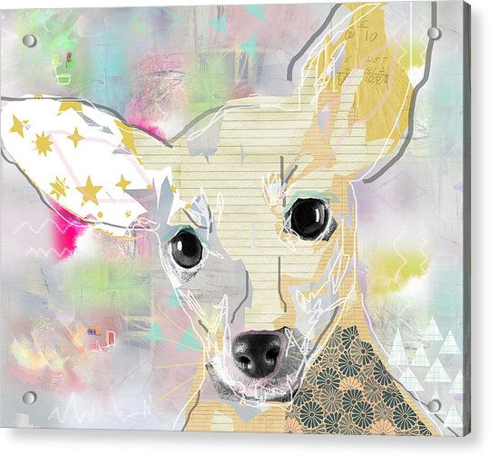 Chihuahua Collage Acrylic Print