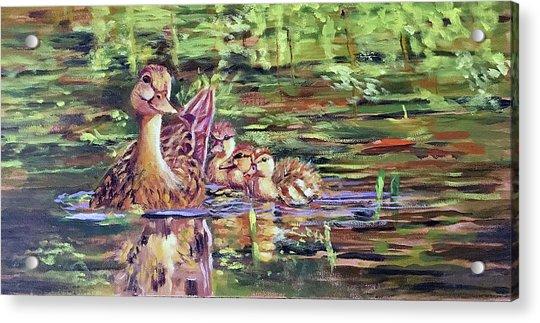 Duck Family Acrylic Print