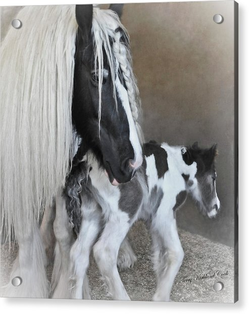 First Moments Acrylic Print