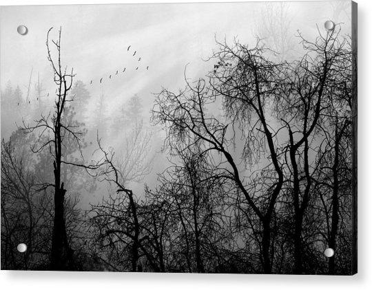 Forever Autumn Acrylic Print