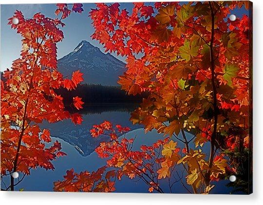 Lost Lake Autumn Acrylic Print