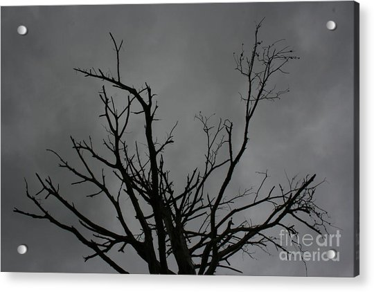 Acrylic Print featuring the photograph Menacing Clouds Overshadowing by Cynthia Marcopulos