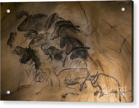 150501p084 Acrylic Print