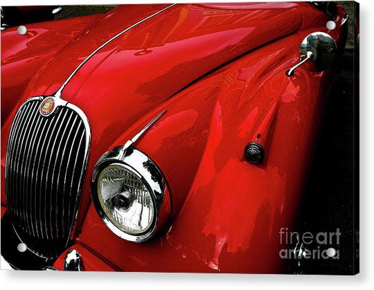 Red Jaguar Acrylic Print