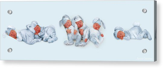 Sleeping Bunnies Acrylic Print by Anne Geddes