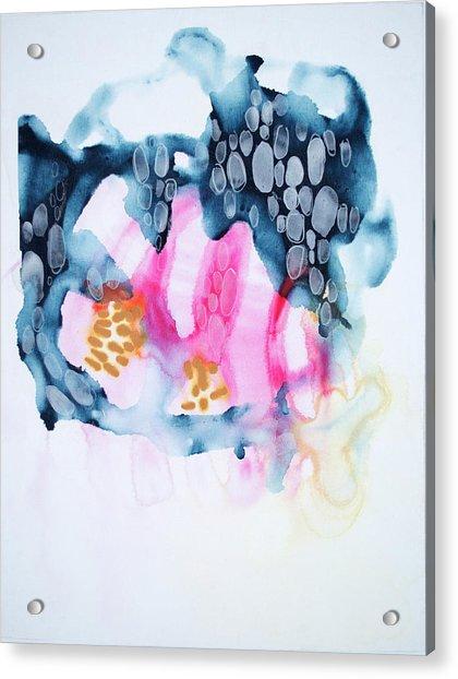4 Winds - Chinook Acrylic Print