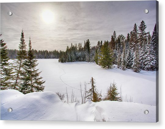 A Cold Algonquin Winters Days  Acrylic Print
