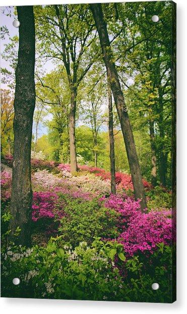 A Colorful Hillside Acrylic Print