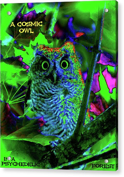 A Cosmic Owl In A Psychedelic Forest Acrylic Print