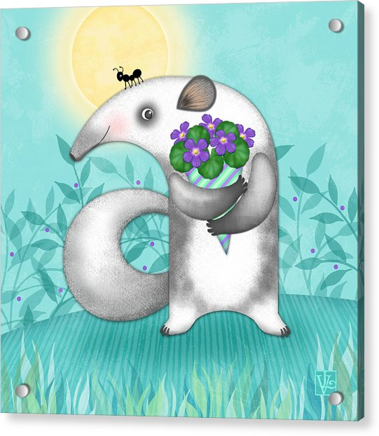 A Is For Anteater Acrylic Print