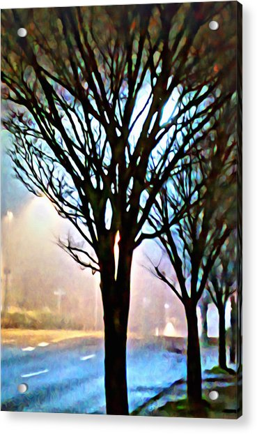 A Light Dusting Of Solitude Acrylic Print